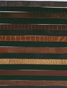 Assorted Leather and Exotic Belts